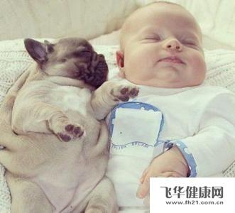 宝宝 壁纸 动物 狗 狗狗 孩子 小孩 婴儿 331_300