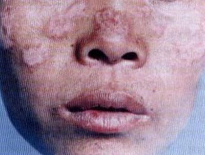 鼻子和口腔内部结构图