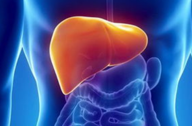 什么是自免型肝炎