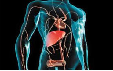 了解一下怎样预防肝炎