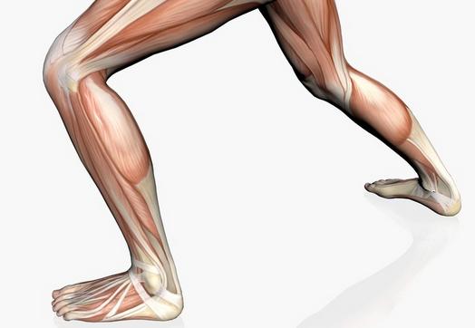 腿肌肉萎缩危害有哪些呢