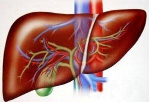 乙肝是什么疾病你了解嗎