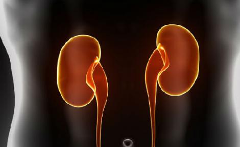 得有肾盂肾炎遗传吗