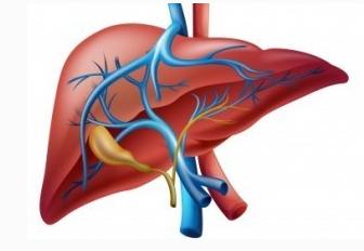 引起急性黄疸型肝炎的原因有哪些