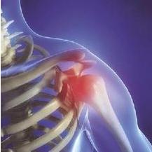 得了肩周炎越运动越痛应该怎么锻炼