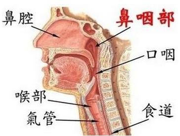 鼻咽癌的危害都有哪些