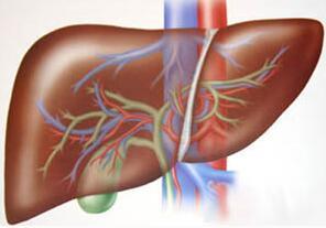 患有肝癌产生黄疸的原因