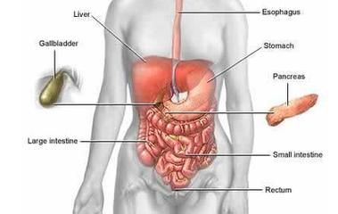 恶性胰腺癌能活多久