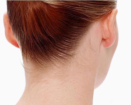 法,尤其是浅表淋巴结,包括颌下、枕后、耳前、颈、锁骨上下、滑车