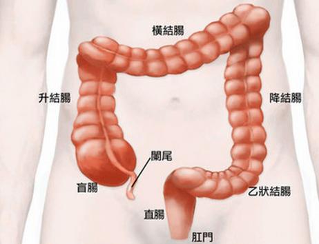 结肠癌化疗期间要注意多补充营养