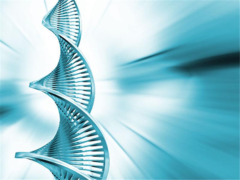 闭经年龄会遗传吗