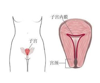 子宫出血量少怎么办