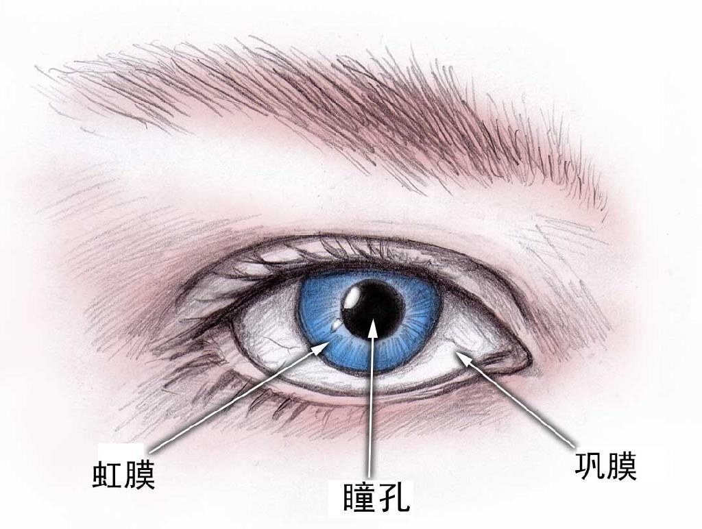 患上了干眼症该怎么办