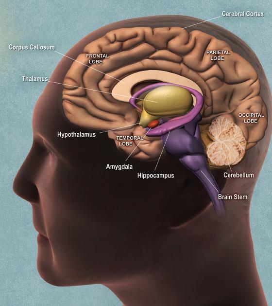 胶质瘤的症状表现是什么
