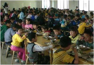 美大学承认用中国儿童做转基因大米试验