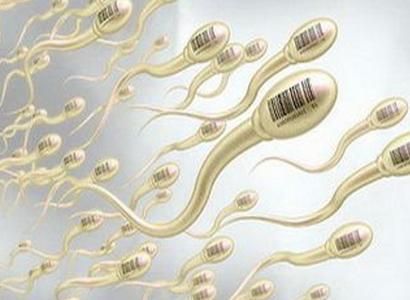 遗传性少精症怎样遗传