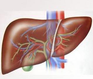 转氨酶高是否是肝炎