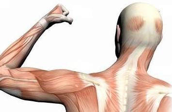 肌肉萎缩病人的护理