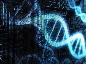 牛皮癣与遗传