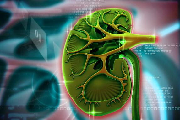 专家讲述肾透析病人能活多久