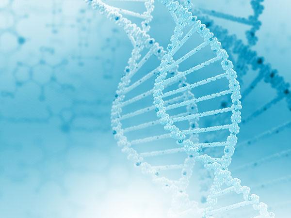 四環素牙會遺傳給后代嗎