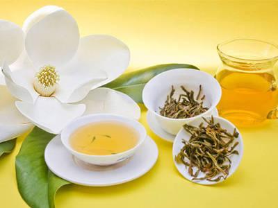 消脂清爽的减肥茶有哪些?