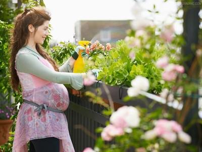 孕妇贫血应该补充三种物质