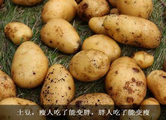 土豆怎么吃能变瘦