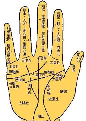男人左手感情线图解 (第1页)   图说健康