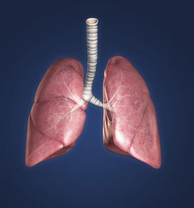 了解一下哮喘發作的癥狀都有哪些