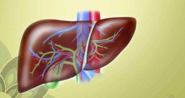 肝血管瘤的治疗原则是什么