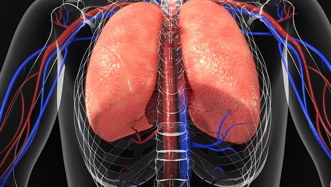 肺癌 (32).jpg