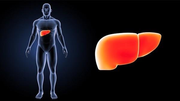 成都丙肝患者还能活多久?