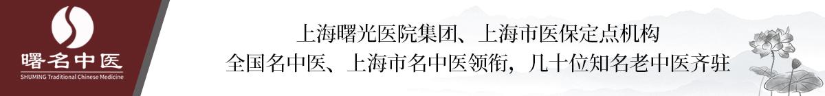 上海中医调理医院