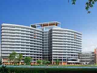 上海脑科医院