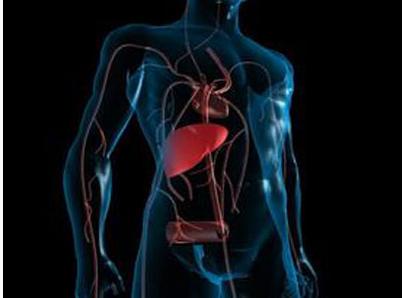 得了自体免疫性肝炎应该注意什么
