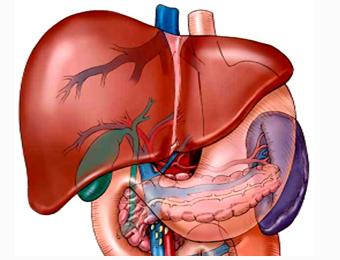 中毒性肝炎症状有哪些