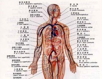 淋巴癌晚期症状有哪些
