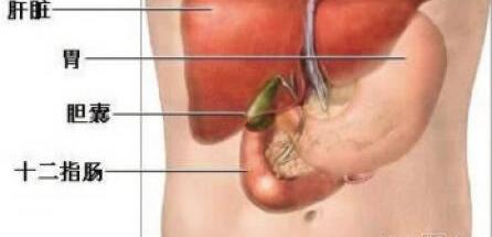 胆囊癌的病发原因具