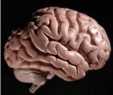 腦癌死亡前的特征是什么