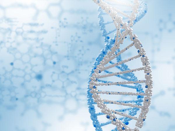 生殖器疱疹能遗传后代吗