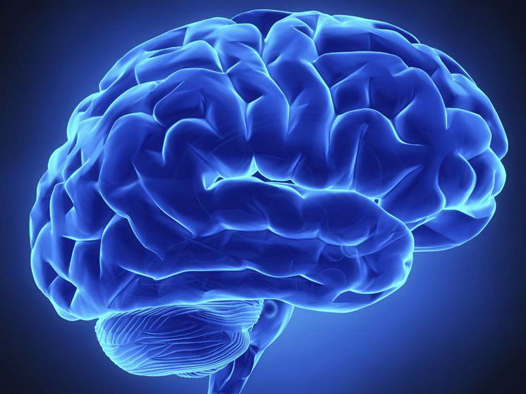 癫痫常见病因有哪些