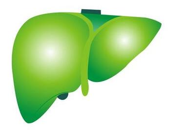乙肝肝炎能治好吗